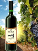 Wine Troitsk white dry, 075 l