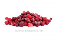Frozen Cranberries/Журавлина заморожена