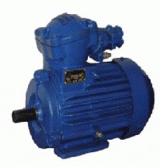 Electric motors of the AIMM, AIU series