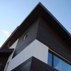 Фасады из деревянных панелей Кривой Рог Украина