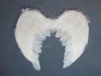 Крылья ангела 50х35 для детского новогоднего