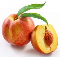 Персики оптом Одесса