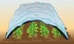 Agrofibre 30, 42, 60