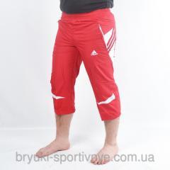 Бриджи мужские  Adidas Код 8768