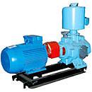 Pumps water ring vacuum VVN