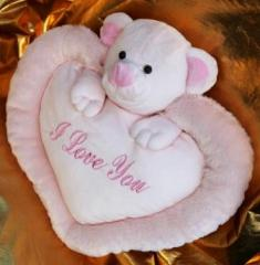 Valentine's Day cards, soft toy pillow