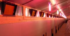 Лампы низкой световой энергии Тулдерхоф Tulderhof,