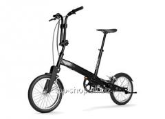 Folding bicycle BIGFISH LYNE
