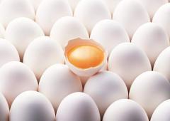 Яйцо домашней птицы Organic eggs, домашнее