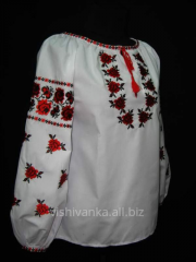 Blouse the female smooth surface embroidered with