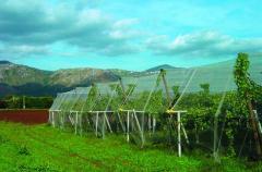 Сельскохозяйственные сетки