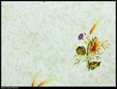 Novelties of wall-paper, Summer Collection