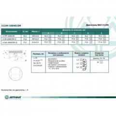 Piston 11194-1004015M, ABTPAMAT trademark