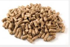 Export pelle