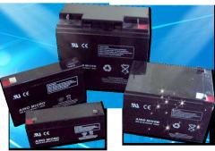 Accumulators lead-acid EverExceed of the AINO
