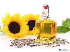 Sunflower oil not refined wholesale Kiev