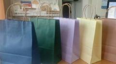 Package paper with handles 150х80х240