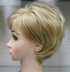 الشعر المستعار.