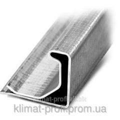 Shinoreyka - the Profile flange 30 (0,6mm)