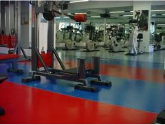 Floor coverings from HOPAMEHT rubber (Froydenberg)