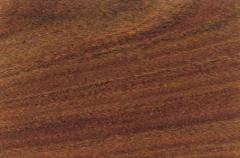 Parquet from natural wood (exotic color breeds of