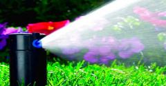 Automatic watering. Watering of a lawn.