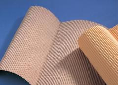 Cardboard for protection of household appliances