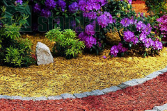 Mulch decorative Gold Artikul:md70-Zol