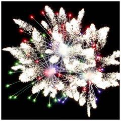 Fireworks Zhytomyr