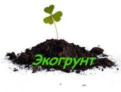 To buy fertile soil cues