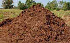 Soil on adding Kiev