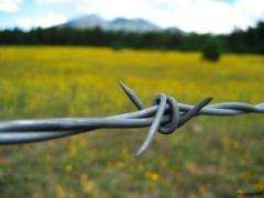 The barbed wire strengthened 1,8 mm