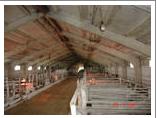 Производство и продажа оборудования для свиноферм,