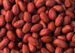 Raw Peanut Kernels and Walnuts Kernels