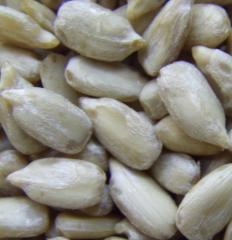 Очищенные ядра семени подсолнечника