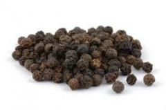 Fragrant black pepper natural