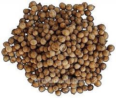 Coriander peas