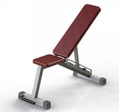 Bench professional to Bubnovsky's exercise machine
