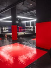 Sports ROLL-mats for single combats, thickness are