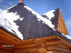 Shingle for roof
