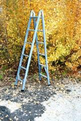 Dielectric folded ladder