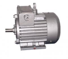 Electric motors asynchronous crane DMT and AMT