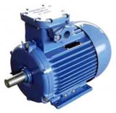 Electric motors asynchronous explosion-proof