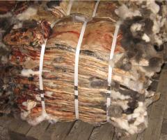 Crawl skins unmanufactured fel