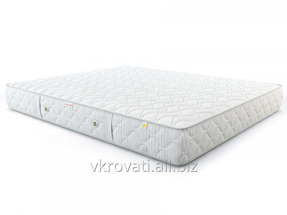 matras_come_for_nezavisimye_pruzhiny_pruzhiny