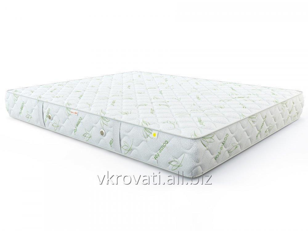 matras_come_for_nezavisimye_pruzhiny_delajt