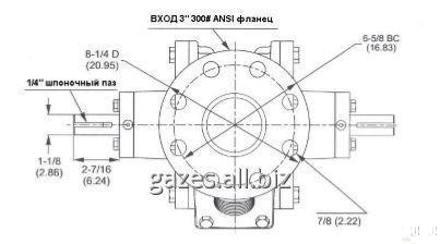 bdc254c459