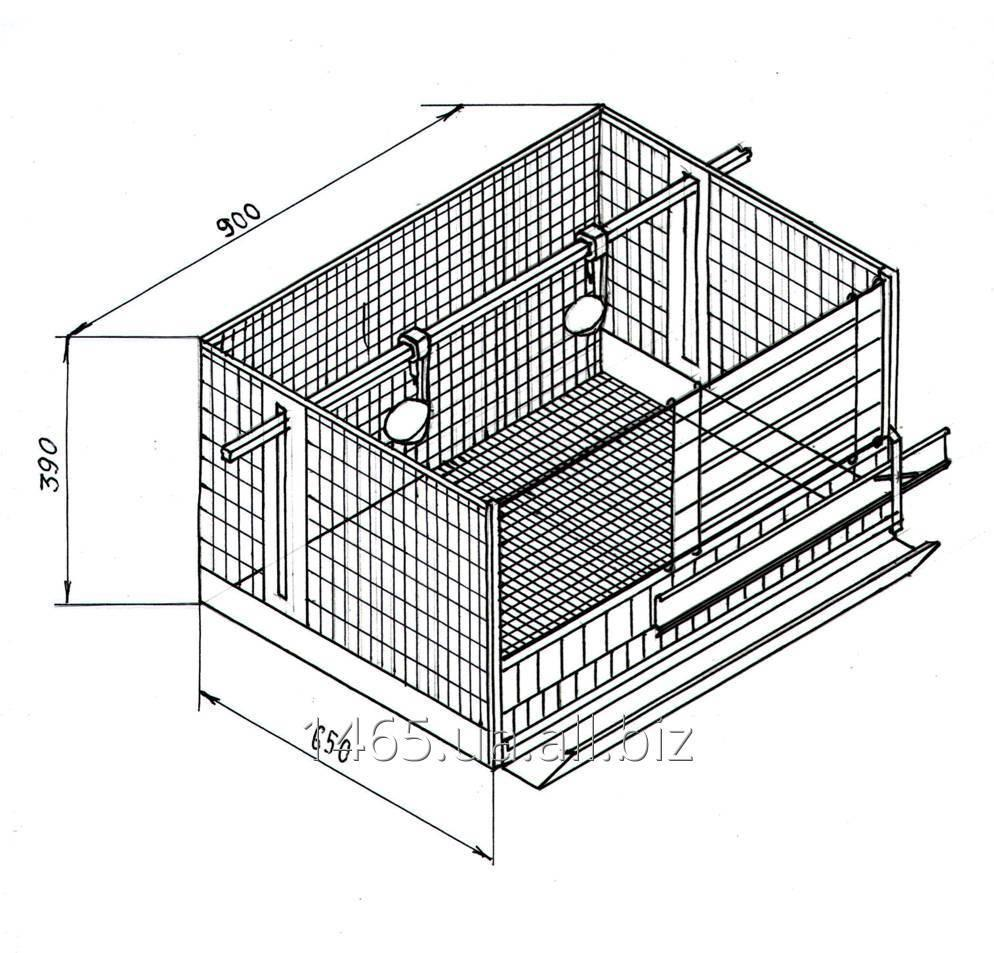 Размеры клетки для кур несушек