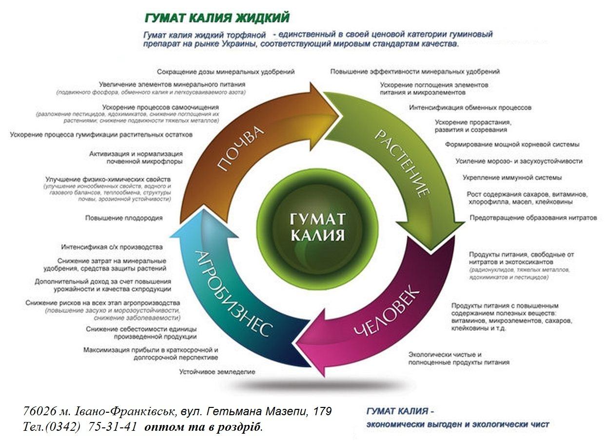 gumat_kaliya_v_meshkah_5_kg_rasfasovannyj_gumat_kaliya_poroshok_gumat_kaliya_bioudobrenie
