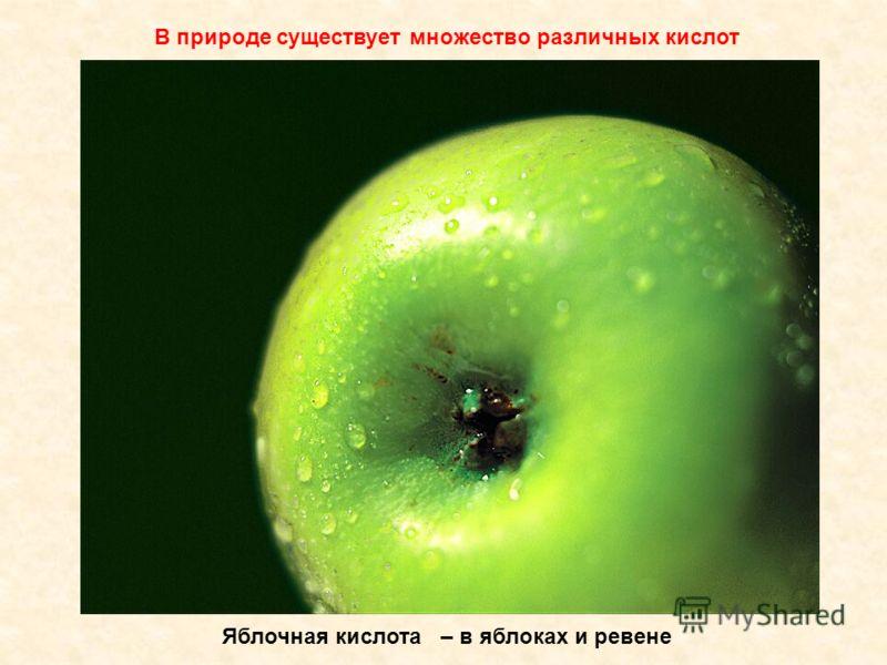 yablochnaya_kislota_kristallicheskaya